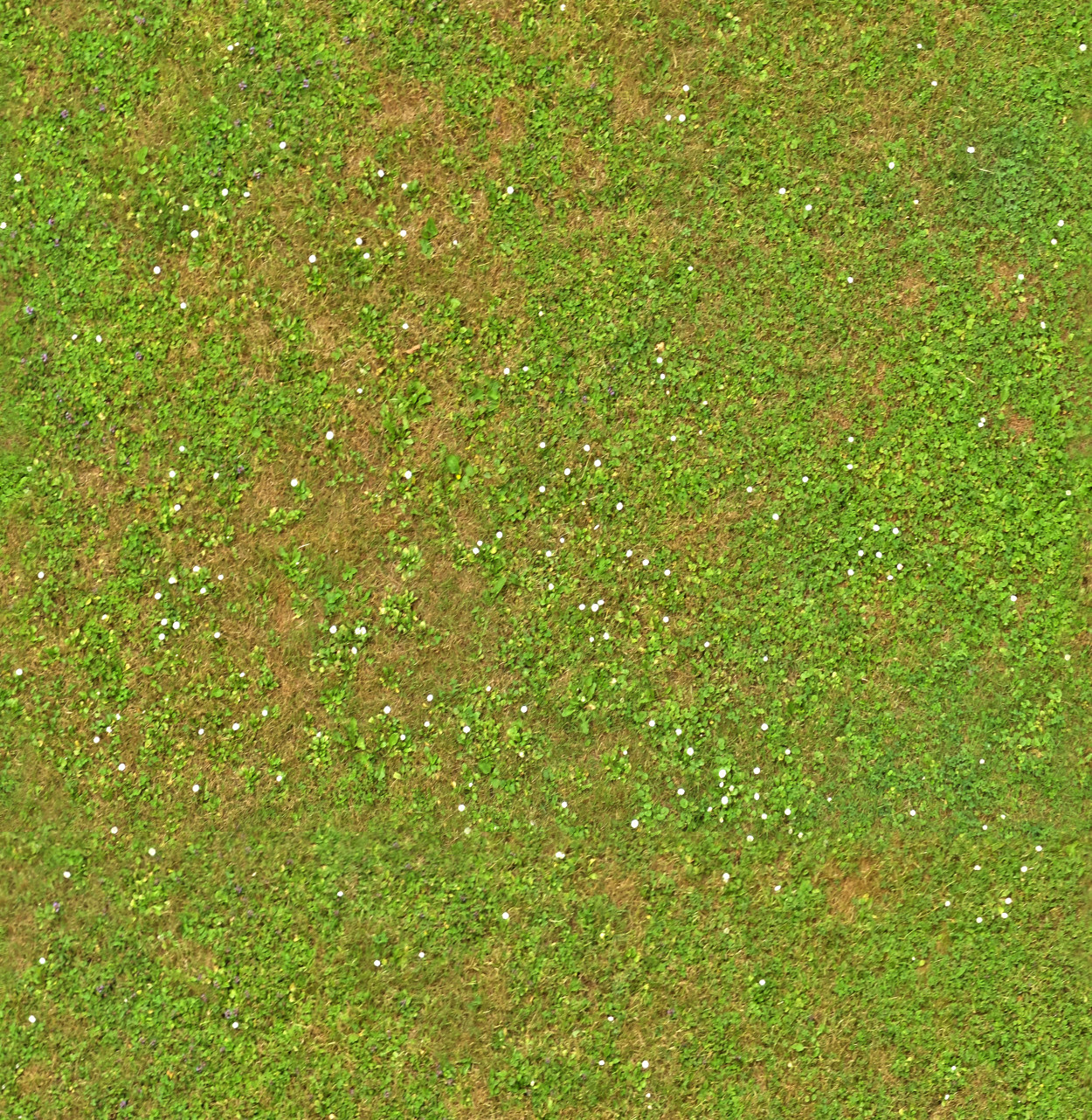 A seamless foliage texture with   arranged in a  pattern